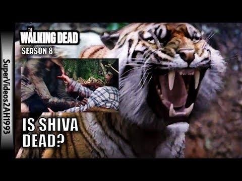 Is Shiva Dead? || The Walking Dead Season 8
