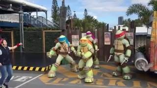Teenage Mutant Ninja Turtles Show Sea World Gold Coast Australia TMNT New