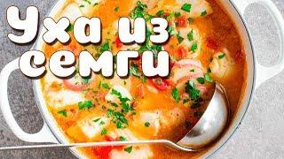 Уха из Семги - рецепт