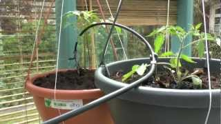 Gardena Flower Box - micro drip - Watering System