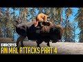 FAR CRY 5 - All Animal Attacks on Cougar (Animal Attacks Part 4) Animals VS Cougars