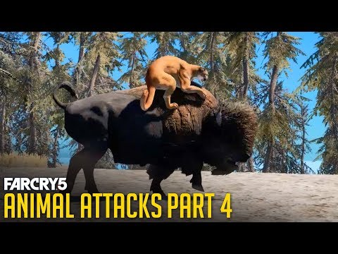 FAR CRY 5 - All Animal Attacks on Cougar (Animal Attacks Part 4) Animals VS Cougars