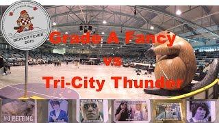 TriCity Beaver Fever 2015 G9 TCRD Thunder v GMDD Grade A Fancy P1 Roller Derby