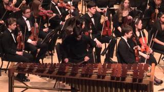 Prism Rhapsody for Marimba and Orchestra - Midwest Young Artists Symphony Orchestra