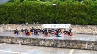 江戸川区立小岩第四中学校黒法被隊(2014大江戸ソーラン)