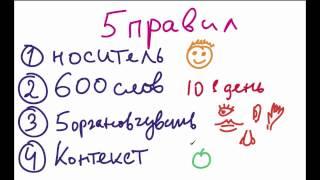 5 Золотых Правил Обучения Детей Английскому Языку