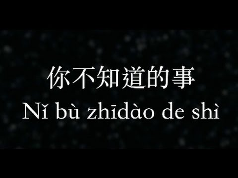 王力宏:你不知道的事 All The Things You Never Knew  (KTV with Pinyin)