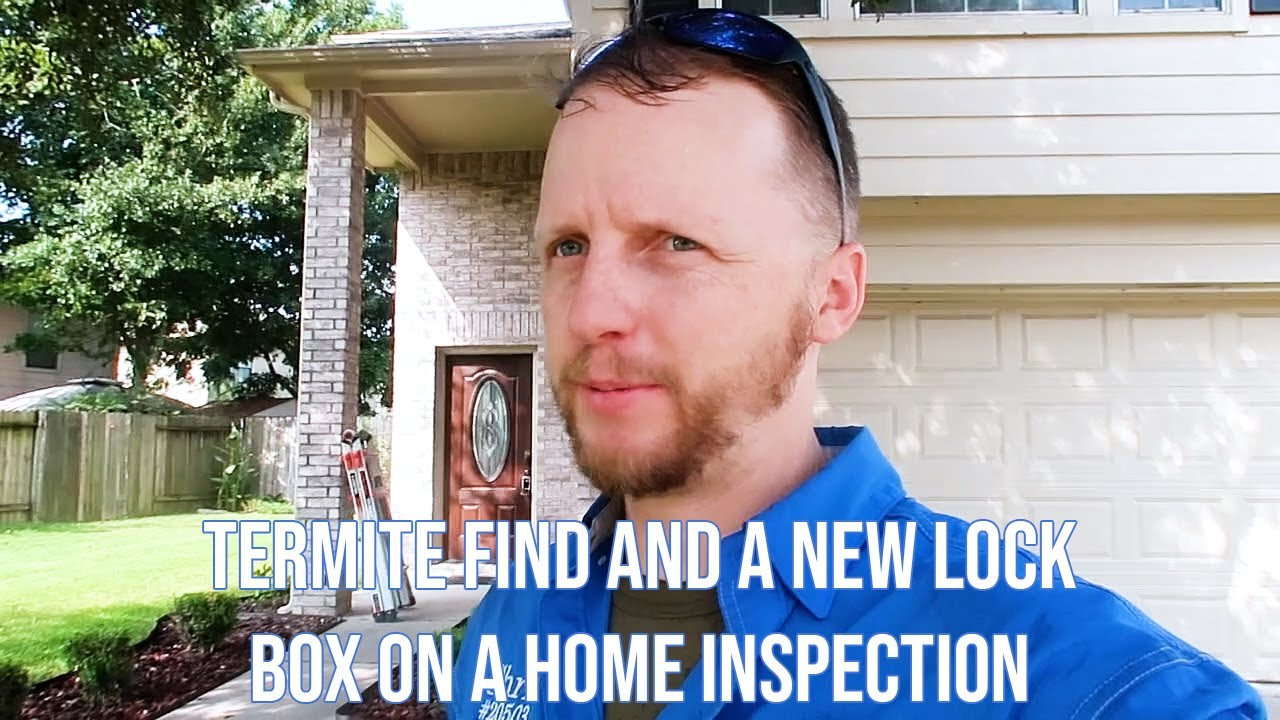 Termite Find and a New Lock Box on a Home Inspection