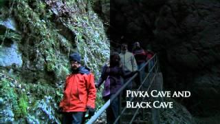 Höhlen von Postojna - UNESCO Weltnaturerbe - Slowenien