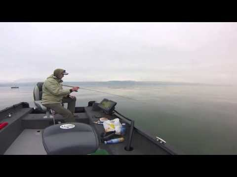 Fishing at lake Zurich in HD