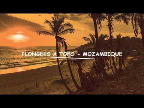 Plongées Mozambique 11 2016