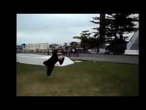 Petterson Fera treinamento de goleiros velocidade e reflexo