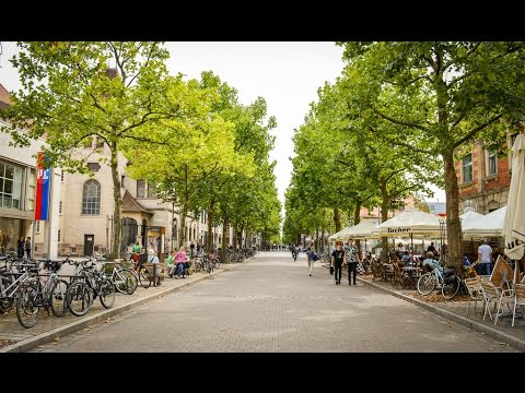 Places to see in ( Erlangen - Germany )