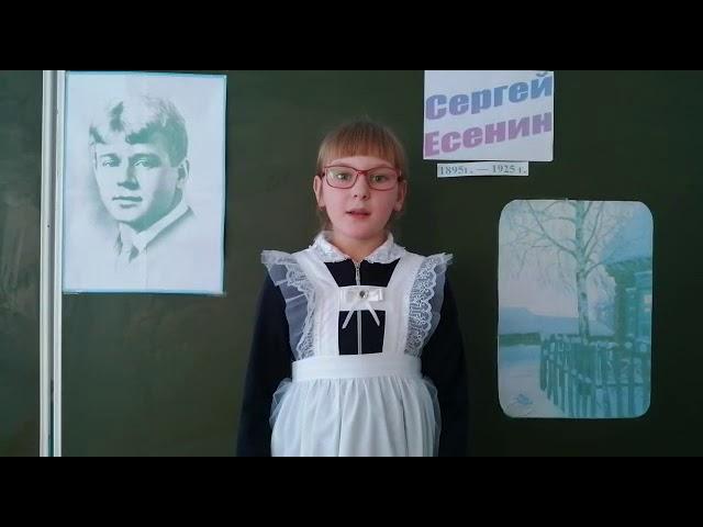 Изображение предпросмотра прочтения – АнастасияНикитюк читает произведение «Белая береза под моим окном» С.А.Есенина