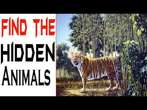 No One Can See The Hidden Animals । Illusions । Brain Test