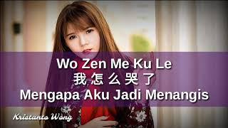 Wo Zen Me Ku Le - 我怎麼哭了 - 趙鵬  Zhao Peng (Mengapa Aku Jadi Menangis)