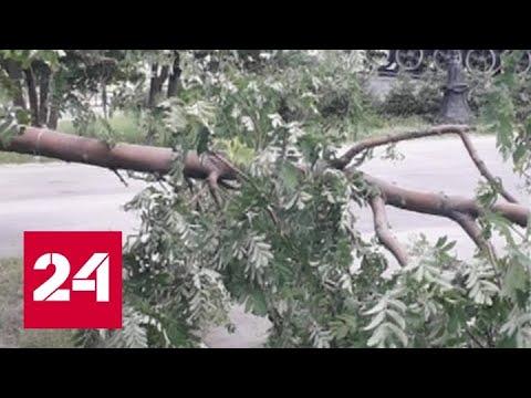 На Алтайский край и Кузбасс обрушился шторм - Россия 24