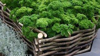 видео Виды садовых клумб