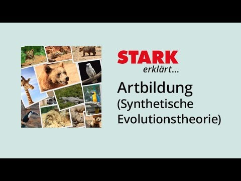 artbildung nach der synthetischen evolutionstheorie stark erkl rt youtube. Black Bedroom Furniture Sets. Home Design Ideas