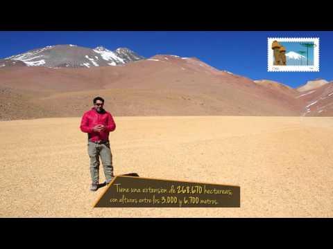 Parque Nacional Llullaillaco - Chile 365 - turismo en Chile