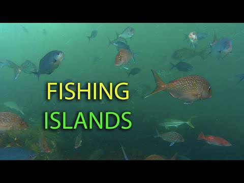 Tips For Rock Fishing Islands & Rock Stacks