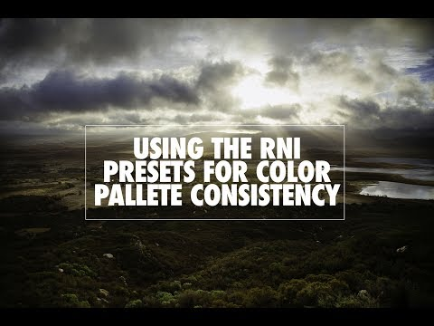 Using the RNI Presets for Color Pallet Consistency