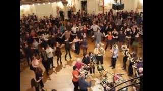 Zlatne Uste Balkan Brass Band Brooklyn NY