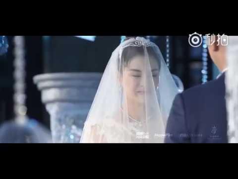 张效诚吴敏霞 Wu Minxia大婚 - 上海归宁宴