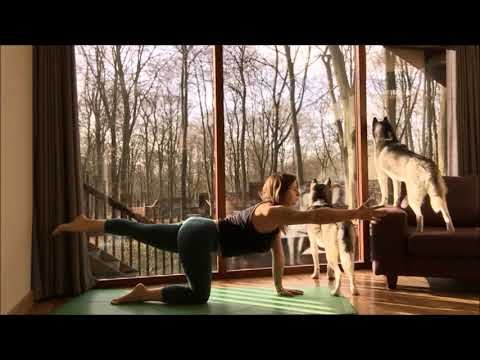 Core Vinyasa Flow Yoga practice ~ Yoga for the core