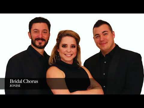 Bridal Chorus  Wagner,  Jonisi Ensemble