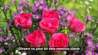 Mehmed Emin Ay - Meftun Olarak (Sözleri İle Birlikte)