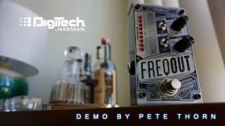Digitech Freqout feedback creator, demo by Pete Thorn