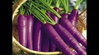 Purple Carrots for Cancer, Diabetes, Arthritis, Vision, Cholesterol and more...