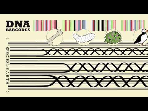 Barcode of Life: Global Biodiversity Challenge