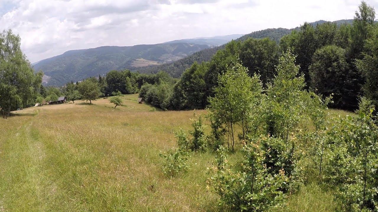 Z Przełęczy Dostena do Bacowki nad Wierchomlą przez Mniszek na Słowacji