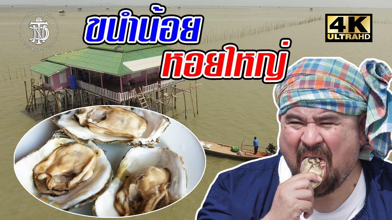 ขนำน้อย หอยใหญ่   Giant oyster