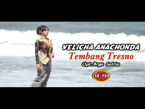 Velicha Anachonda - Tembang Tresno [OFFICIAL]