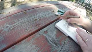 Urban Sketching: Time lapse of the caboose sketch