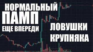 Почему криптовалюта сейчас будет ПАМПИТЬСЯ?