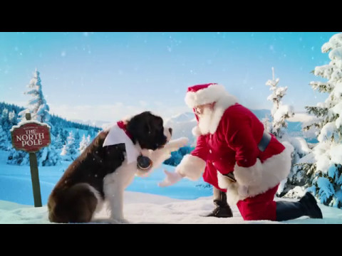 Elf On The Shelf Pets A Saint Bernard Youtube