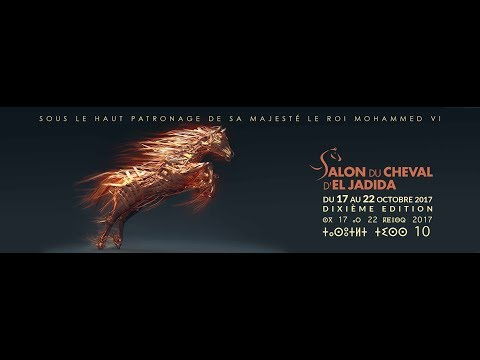 Salon Du cheval d'el jadida 2017