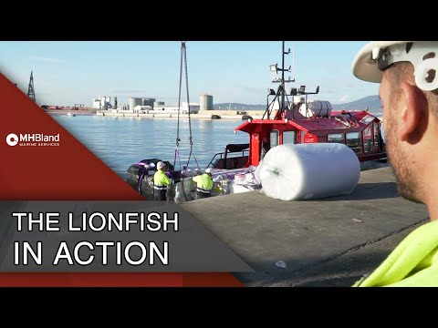 Lionfish providing Ship Stores | MH Bland Marine Services