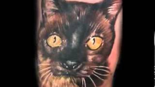 Татуировки котов (часть1) —flv