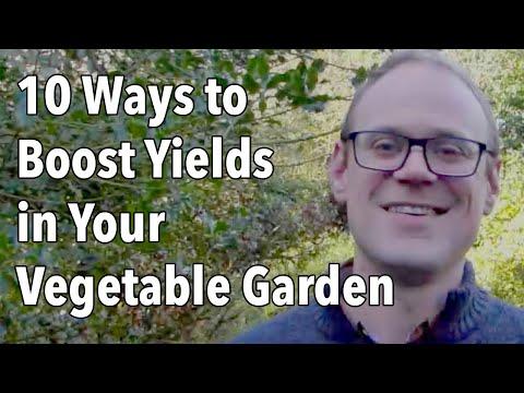 10 Ways to Boost Yields in Your Vegetable Garden