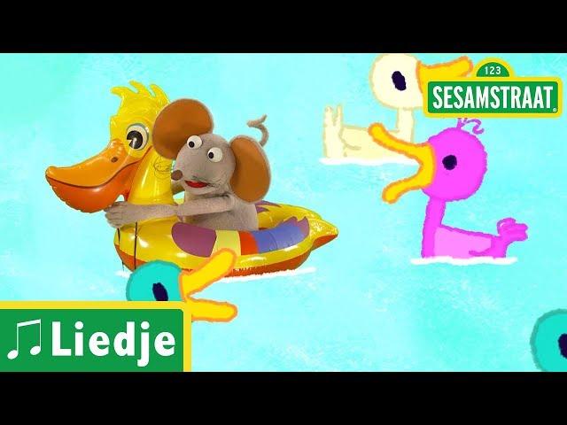 Alle eendjes zwemmen in het water - Kinderliedje - Sesamstraat