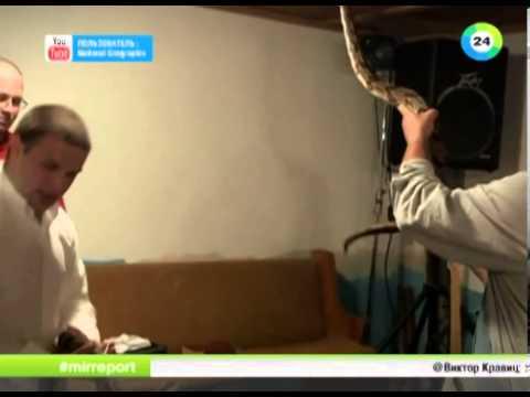 ШОК Телеведущий в США скончался во время съемок от укуса змеи...02/14