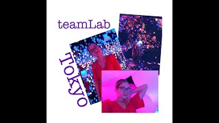 Digitālās mākslas muzejs - teamLab Tokyo