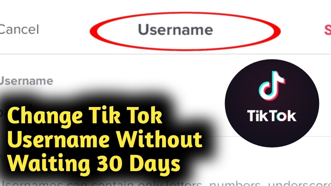 How To Change Your Tik Tok Username Without Waiting 30 Days Problem Solved Youtube