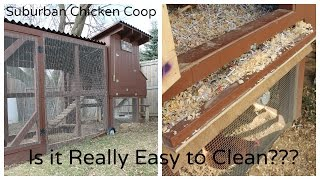 Suburban Chicken Coop - Is It Really Easy To Clean?