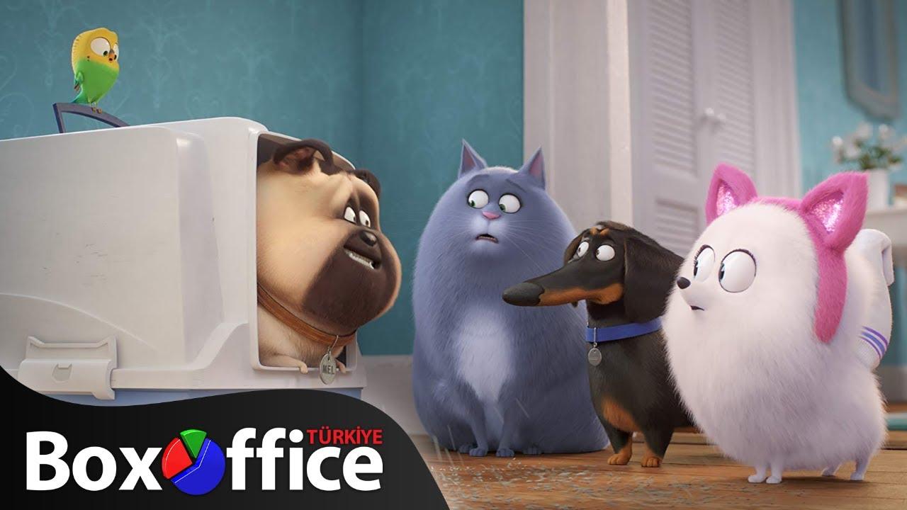 Evcil Hayvanların Gizli Yaşamı 2: Fragman 3 (Türkçe Dublajlı)